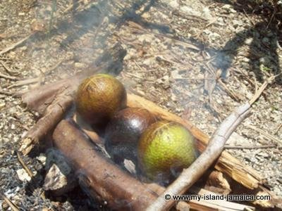 Roasting Breadfruit