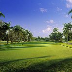 Jamaica Golf -Half Moon Course