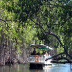 jamaica_tour_boat_on_the_black_river