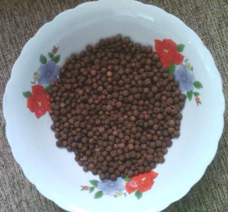 jamaican allspice - dried pimento