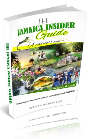 travel guide to jamaica
