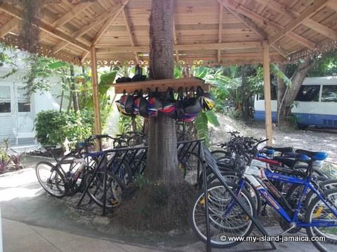 bicycling at fdr resort jamaica