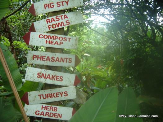 animal_farm_2007_JAMAICA_directions