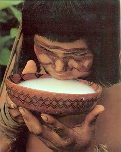 arawak drinking