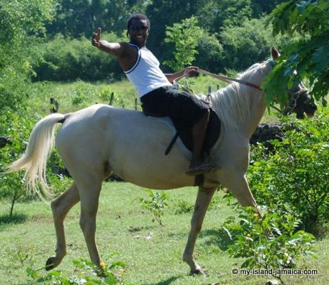 Horse Riding At Blue Hole