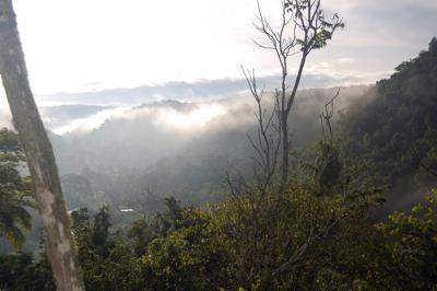 Rural Scenery in Jamaica