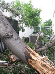Hurricane Dean Picture