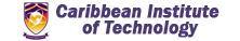 old Caribbean institute of technology logo