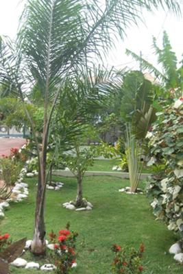 Castle Point Villa Retreat Garden