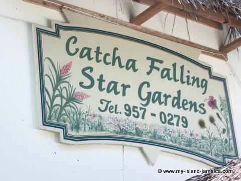 catcha falling star banner