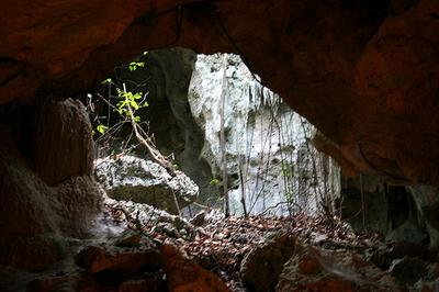 green_grotto_caves_jamaica_rocks