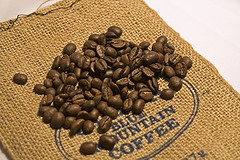 dried_blue_mountain_coffee