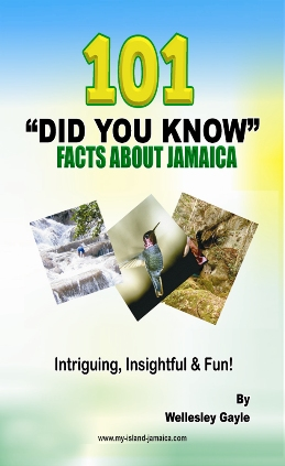 Did you Know Facts about Jamaica book