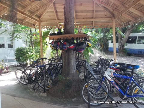 bicycling at fdr resort jamaica