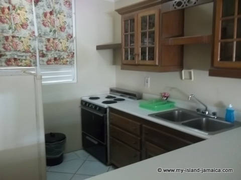 fdr_resort_in_jamaica_kitchen