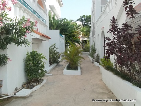 property at fdr resort jamaica