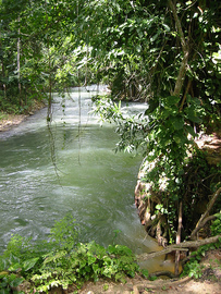 rivers in jamaica - martha brae rafting