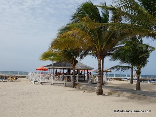 jamaica_vacation_wellesley_anniversary_2018_coconut_trees