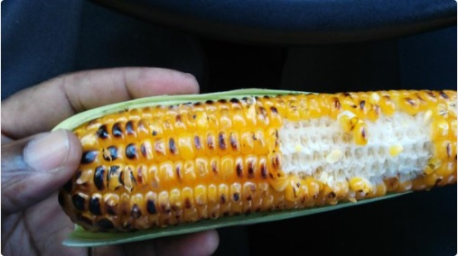 jamaican roast corn