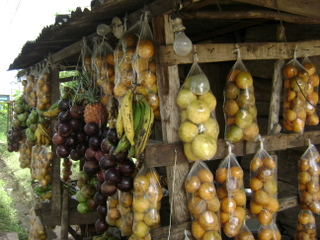 Jamaican Vacation- Road Side Fruits