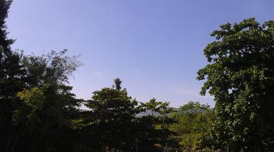 Jamaican Hills and Plains