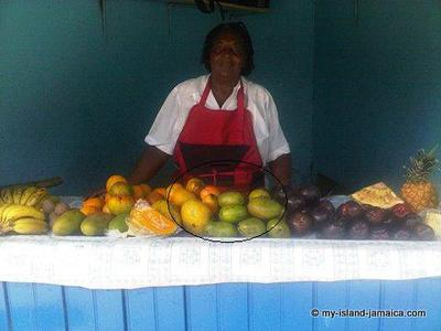 Jamaican Fruit Lady