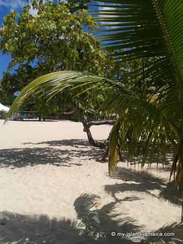 monego bay beach - cornwall