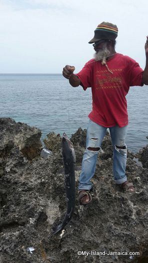 negril_jamaica_resorts_the_spa_retreat_hotel_fisherman_with_barracuda