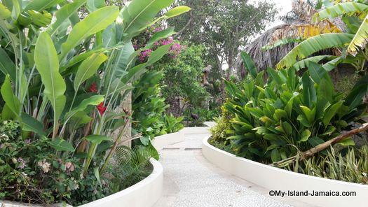 negril_jamaica_resorts_the_spa_retreat_hotel_green