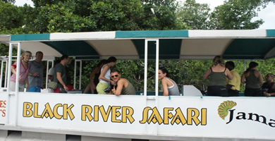 Black River Safari Tour