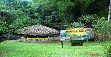 MayField's Falls Tour