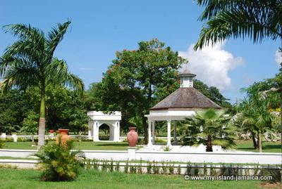 ocho rios cougars dating site When searching for locations to determine or things to do, you'll want to check out menkarta for a fully comprehensive gay guide of ocho riosthe site offers info on every thing a gay man.