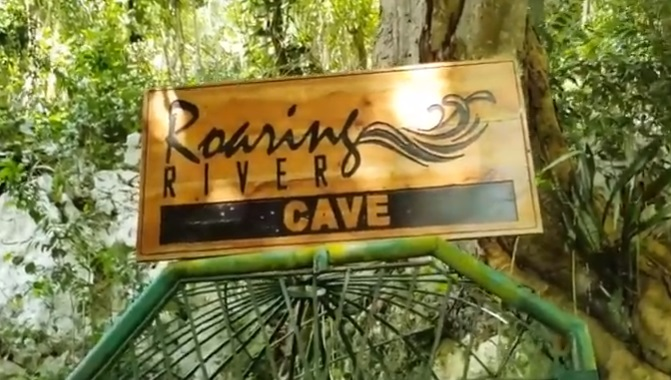 roaring river Jamaica cave and attraction