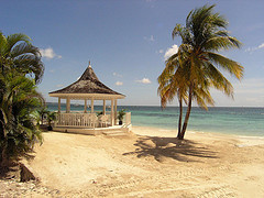 sandals_negril_jamaica_beach_coconut_trees