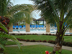 starfish_trelawny_jamaica_coconut_trees