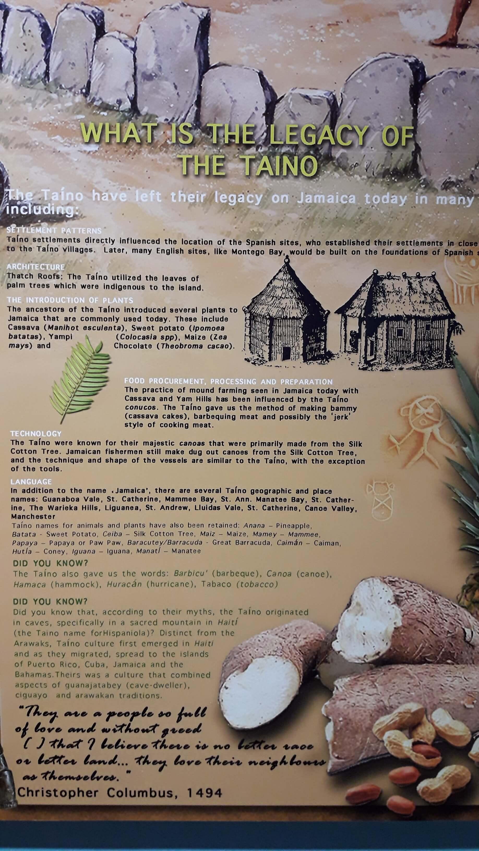 Tainos Arawaks Contribution To Jamaica
