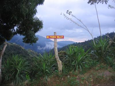 Road Sign leading the way to Prince Valley Guest House in the Blue Mountains.