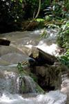 Enchanted Gardens In Ocho Rios,Jamaica