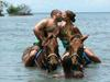 Jamaica HorseRiding in Water