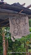 random sign in Jamaica - coal for sale