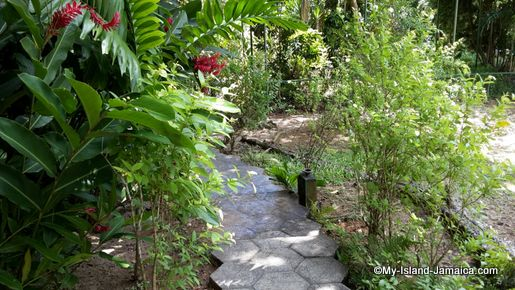 turtle_river_falls_garden_jamaica_review