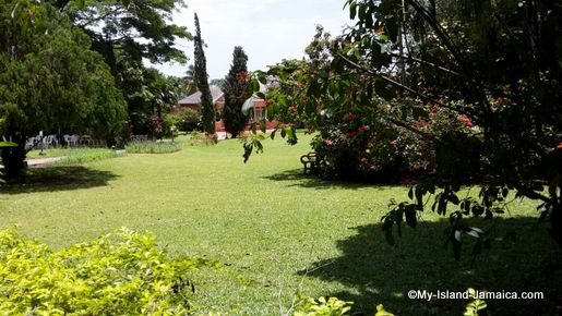 turtle_river_falls_jamaica_review_lawn