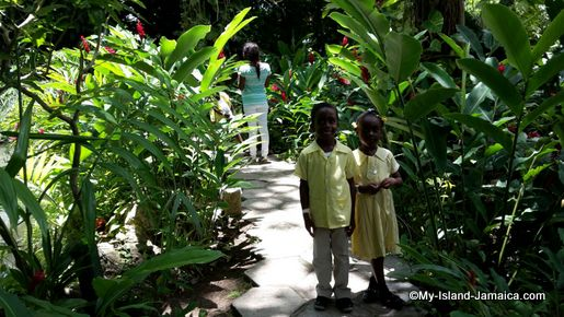 turtle_river_falls_jamaica_yapp_and_aliana_gayle