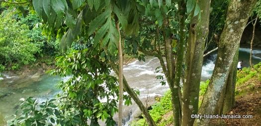 benta_falls_jamaica_waterfalls
