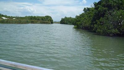 The Black River, so serene