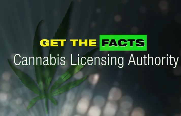 cannabis_licensing_authority_facts