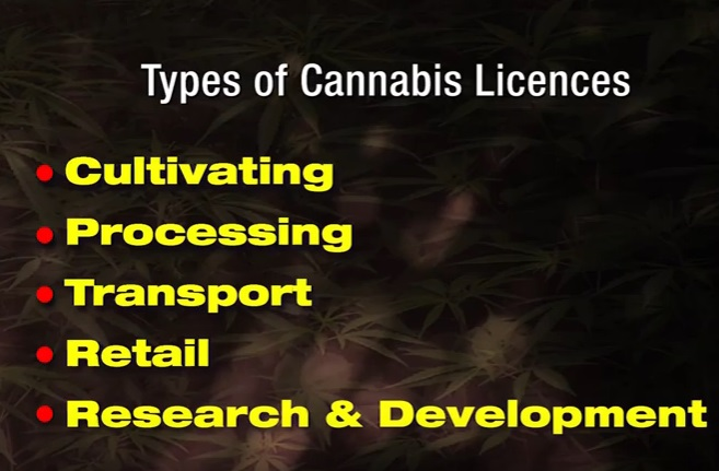 cannabis_licensing_authority_types_of_licences