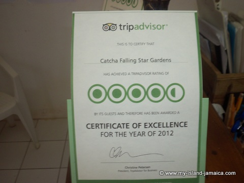 catcha falling star gardens trip advisor certificate