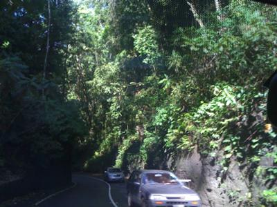 my this road is narrow.  and twisty.  and no shoulder.  :D
