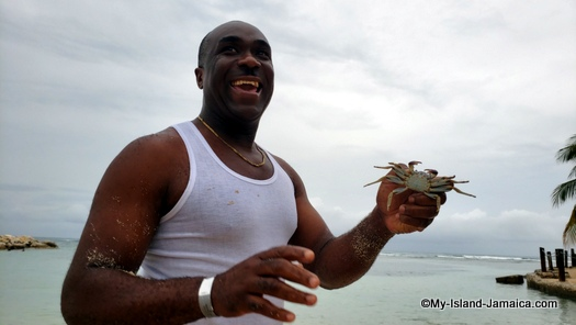 holiday_inn_resort_montego_bay_wellesley_with_crab